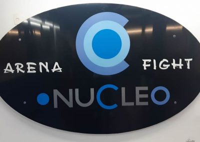 PLACA NUCLEO2